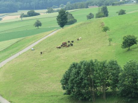 Photoessay: A paradise called Regensberg, a hill town near Zurich