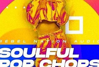 Dropgun.Samples.-.Vocal.Future.Pop.by.Arcando - Sound