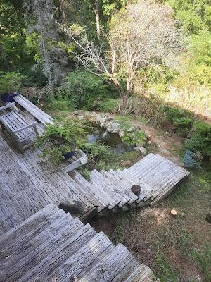 Zen Gardening?