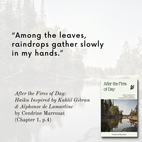 'After the Fires of Day': Favorite haiku from the book