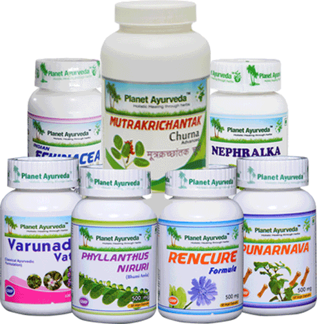 What is Chronic Kidney Disease? – Treatment through Ayurveda
