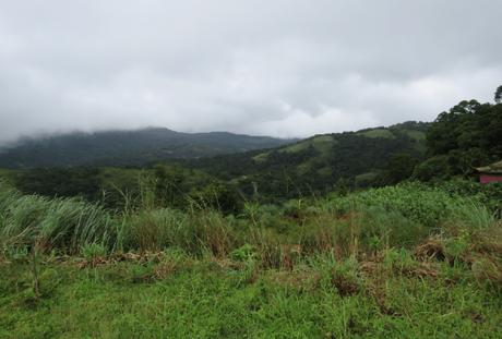 Photoessay: Monsoon Magic in Coorg