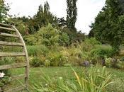 Letter Garden September 2021 Been While....