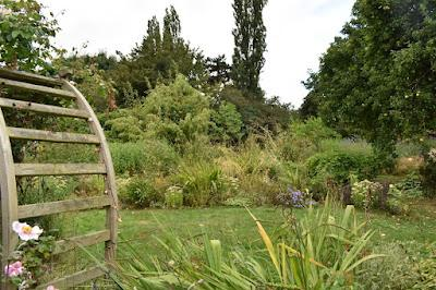 Letter to the Garden September 2021 - its been a while....