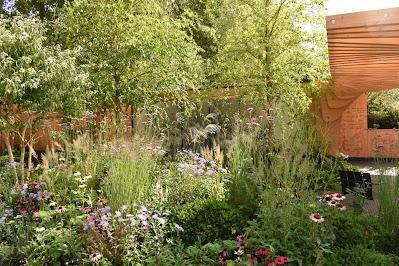 RHS Chelsea Flower Show 2021 - the September Edition