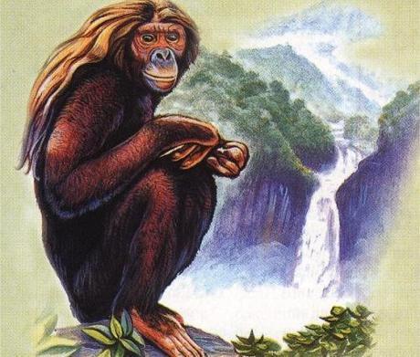 Very nice drawing of an Orang Pendek.