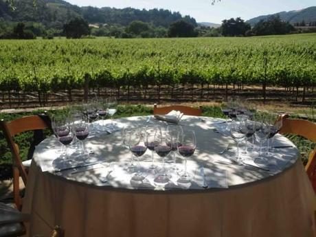Winemakers Dinner at the home of Dutcher Crossing's proprietor, Debra Mathy photo ©Ilona Koren-Deutsch