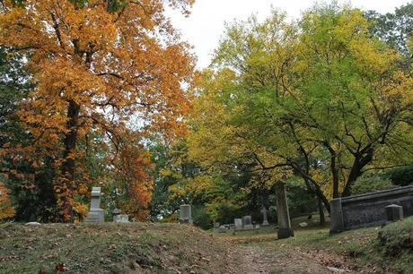 Mt.Hope Cemetery  [Orange You Glad It's Friday]