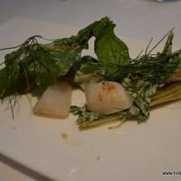 scallops with grilled fennel, sorrel and fennel pollen