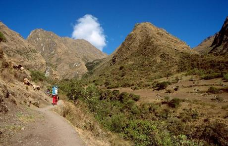 Hiking the Inca Trail in the Time of COVID