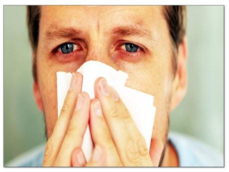 How to Stop Winter Allergies from Ruining Your Day