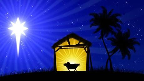 Ready to take a step toward cybersafety? Nativity Scene with Animated Palm Stock Footage Video (100