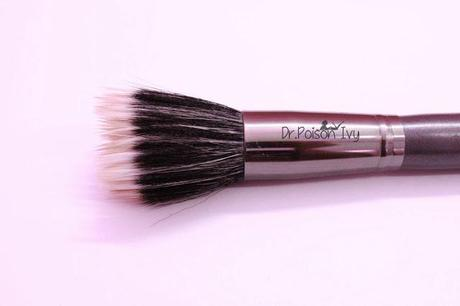 Colorbar Duo Fiber Stippling Brush Review