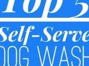 Self Serve Wash Locations