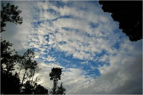 Weather at Coorg