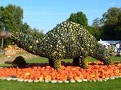 Reasons Visit World's Largest Pumpkin Festival Germany