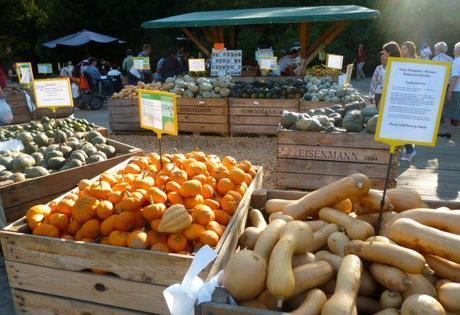 pumpkin festival pumpkin market