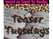 Teaser Tuesdays: Divergent