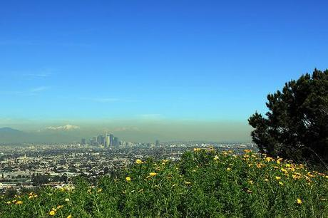 Cleanest Air in the World? WHO Ranks the Best and Worst Places