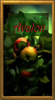 Avalon...an adventure in mystical apples