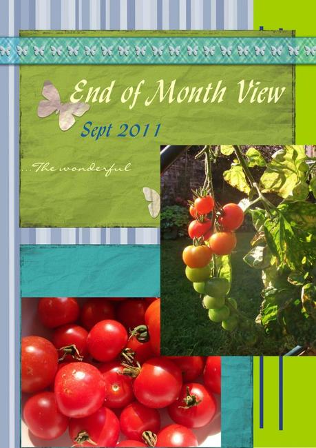 End of Month View: September 2011