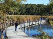 Wood Lake... Area's First Municipal Nature Center
