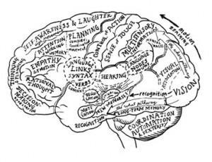 Mental Models – The Second Discipline of Learning Organizations