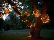 Create Stunning Outdoor Lighting with Grapevine