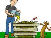 Basics Creating Maintaining Organic Garden