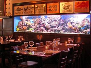 Seafood lovers paradise at Lucius