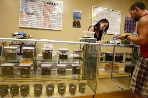 """Feds Go """"Passive-Aggressive"""" in Fight Against Medical Marijuana"""