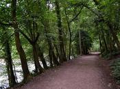 Walk Along River Symonds Ross-on-Wye