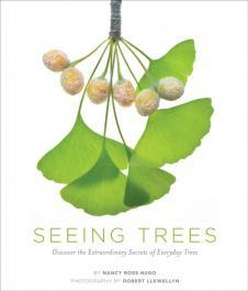 Seeing Trees – Book Review