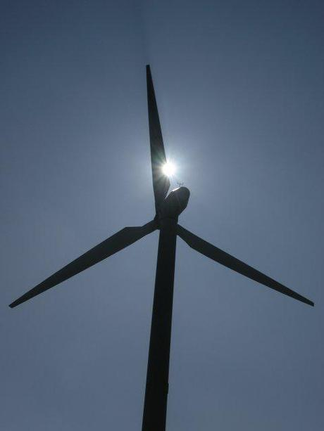 Common Misconceptions about Alternative Energy Sources