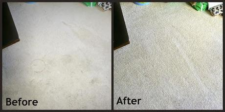The Rug Doctor Before And After