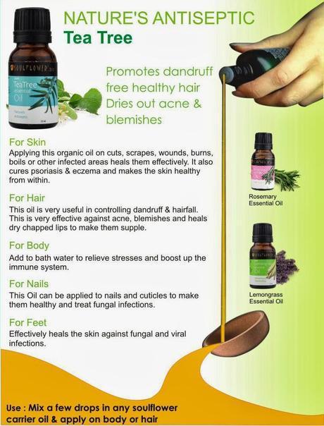 Soulflower Tells The Tale of Tea Tree Oil