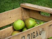 Pecking Apples