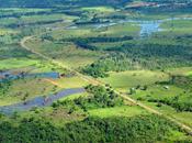 Deterioration Amazon