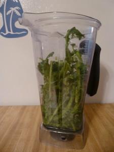 Kale stalks for kale soup