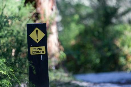 blind corner sign currawong falls track