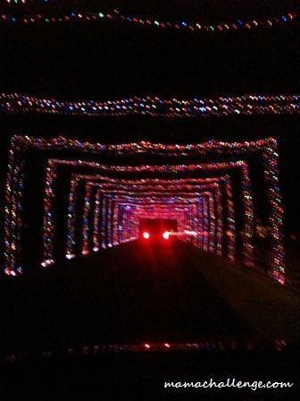 Holiday Rundown: See the Lights at Grand Prairie's Prairie Lights Powered by Gexa Energy