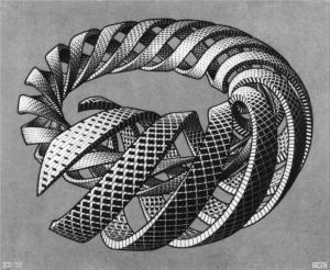 Spirals by MC Escher (1953)