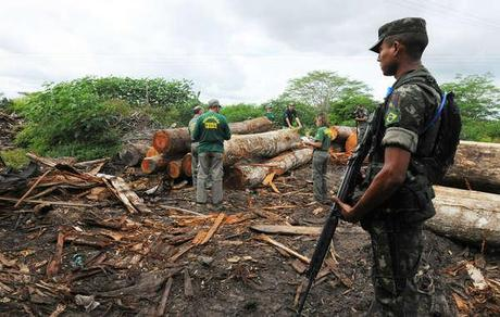 A ground operation against deforestation failed to remove loggers from the Awá territory. © Exército Brasileiro