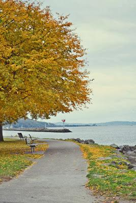 In Photos: Autumn in Seattle 2013
