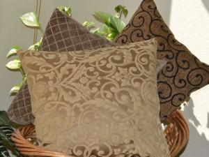 Photo Earthtone pillow