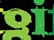 TGIF Weekly Roundup: November 4-8, 2013