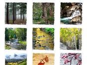 2014 Colorado Nature Calendar, Travel