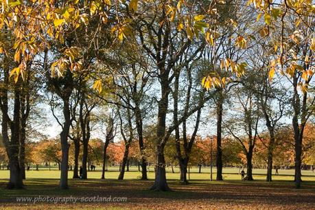 Sunshine on the Meadows, Edinburgh