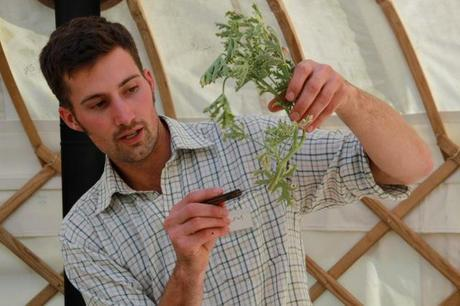 Joseph Ford points out parts of a plant