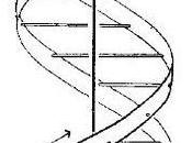 Description Redux, Again: Methodological Centrality Diagrams